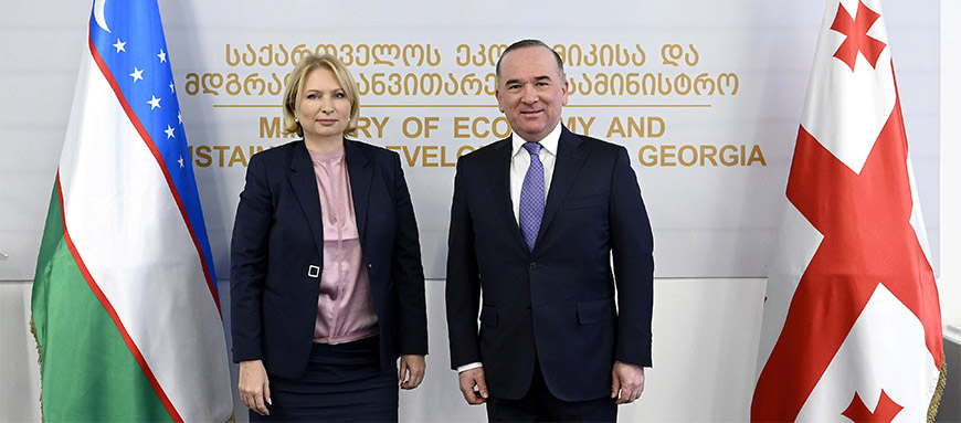 Natia Turnava met with the First Deputy Minister of Investment and Foreign Trade of Uzbekistan, Alisher Abdualiev – 12.02.2020