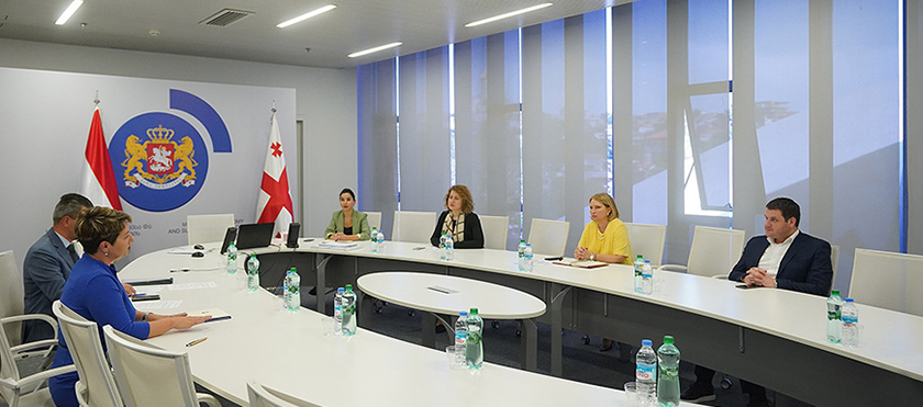Natia Turnava Met with Hungarian Ambassador to Georgia, Viktória Horvát - 20,05.2020